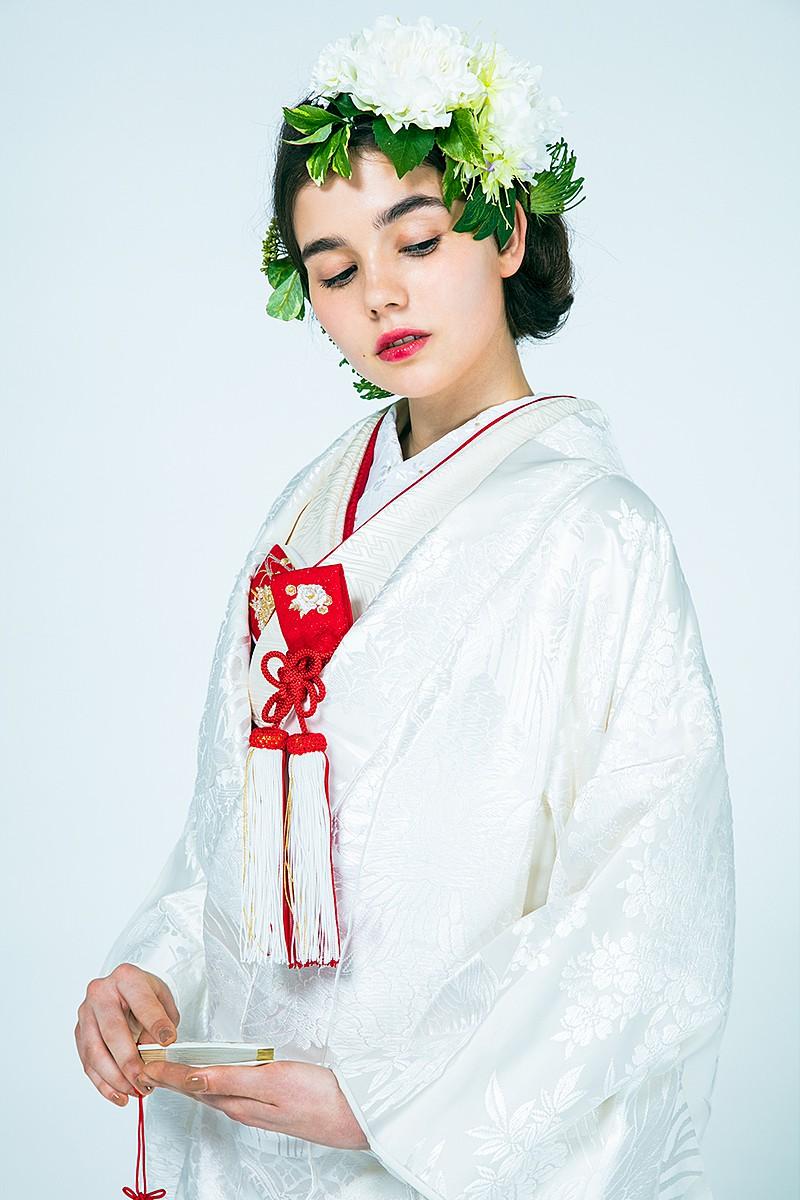 寿鶴彩花紋