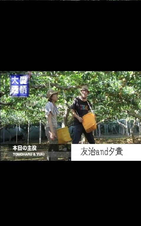 オープニングムービー・mini・愛情大陸